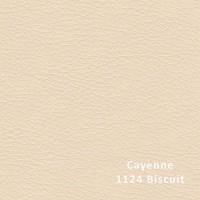 CAYENNE 1124