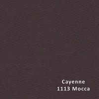 CAYENNE 1113