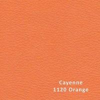 CAYENNE 1120