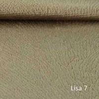 LISA 7