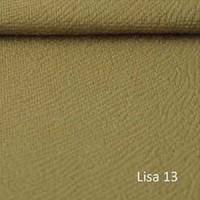 LISA 13