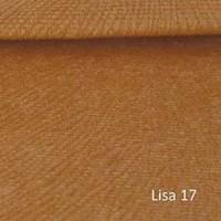 LISA 17
