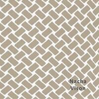 Nacha Vison